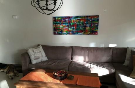 ציור בהזמנה אישית בית בקדימה