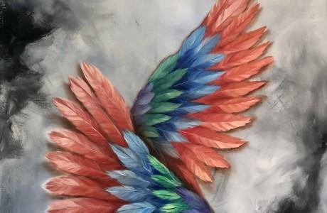 """כנפיים (12) 80/100 ס""""מ"""